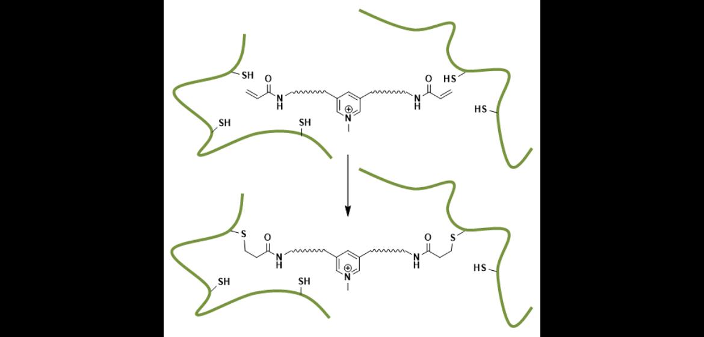 Molecular Bionics (c)