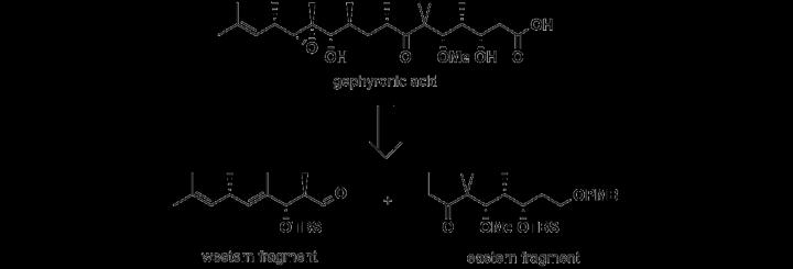 Gephyronic Acid (c)
